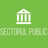 logo sector public